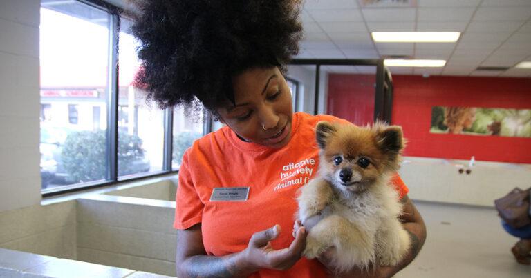 Atlanta Humane Society is Creative Cares' First Quarter Recipient